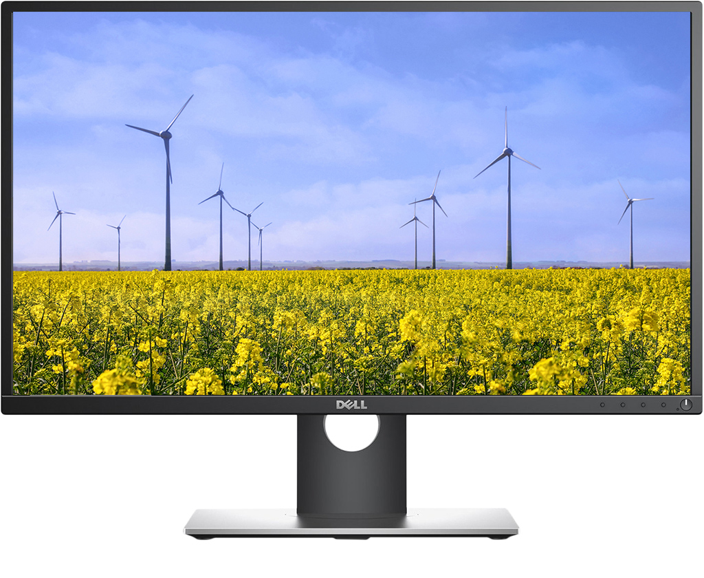 Màn hình LCD Dell Professional P2417H 24 in Wled Panel IPS Full HD.